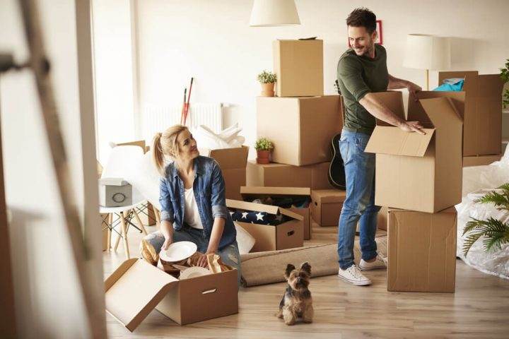 Importance of Conveyancing Solicitor